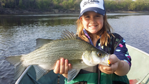image of Mae Edlund with huge White Bass