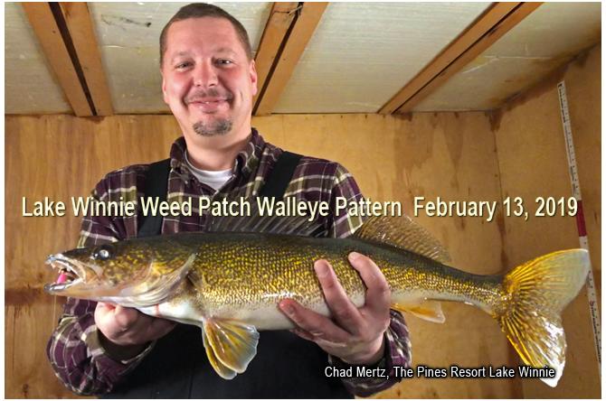 Lake Winnibigoshish Winter Walleye Pattern