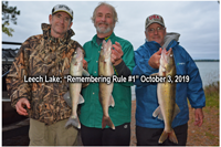image of anglers with Leech Lake walleyes