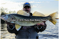 image of gian rainy river walleye