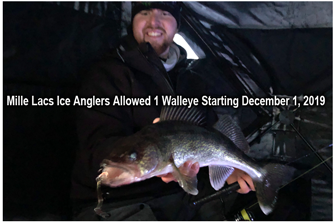 image of walleye at millelacs