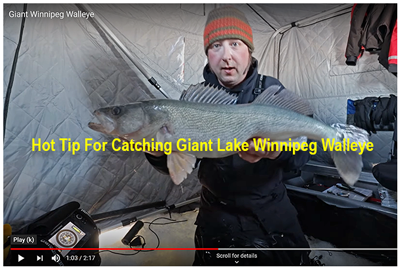 image links to perch fishing video