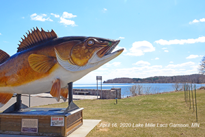 image of walleye statue overlooking lake mille lacs.