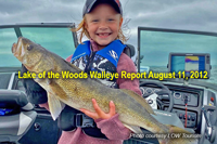 image links to lake of the woods walleye reports