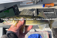 image links to reader question about winnie walleyes
