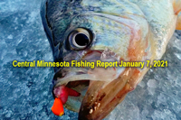 image links to central minneosta fishing report by shane boeshart