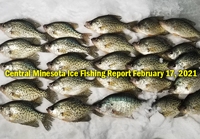 image links to central minnesota ice fishing report by shane boeshart