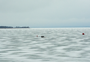 image of ice anglers on Tamarack Bay, Lake Winnibigoshish