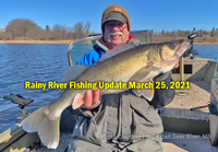 image links to walleye fishing report from the Rainy River