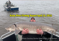 image of huge sturgeon caught on the rainy river