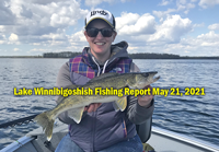 image links to the pines resort lake winnie fishing report