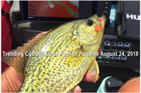 image links to cutfoot sioux fishing report